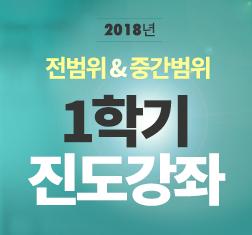 2018년 전범위+중간범위 진도강좌